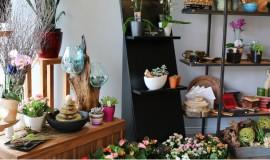 mariage-montreal-marché-aux-fleurs (02)