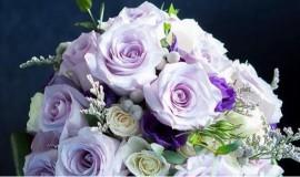 mariage-montreal-marché-aux-fleurs (06)