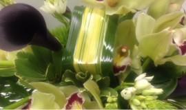 mariage-montreal-marché-aux-fleurs (13)